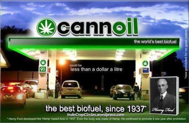 cannoil-ganja-cannabis-biofuel