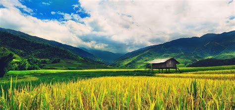 Natural Scenery, Natural, Scenery, Poster Background Image