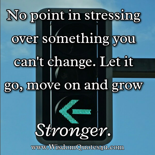 No Point In Stressing Over Something You Cant Change Wisdom Quotes