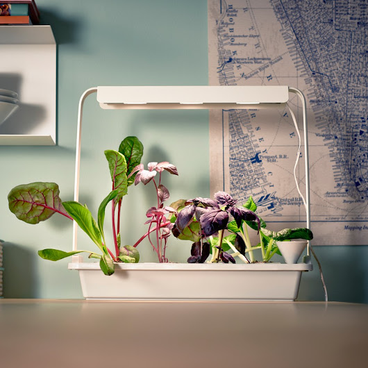 IKEA is selling hydroponic grow kits to grow vegetables inside.  Urban farmers unite!