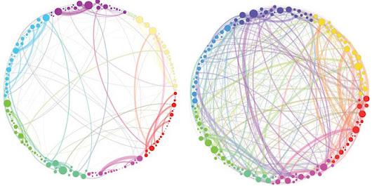 Science Graphic of the Week: How Magic Mushrooms Rearrange Your Brain | WIRED
