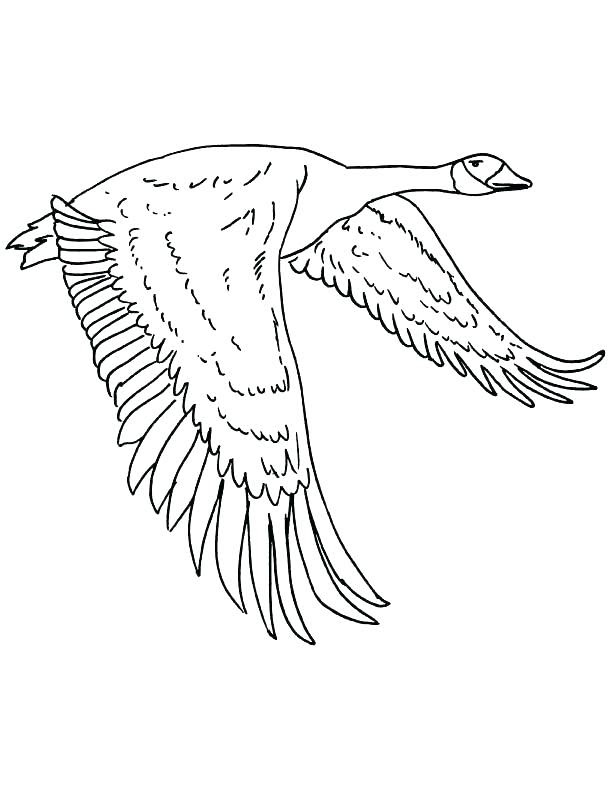 Goose Coloring Page at GetColorings.com | Free printable ...