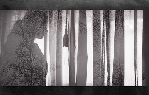 50/365 – True Nature by Joana C.