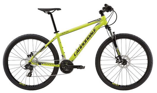 The Beginner Bike Buyers Guide | Arkansas Outside