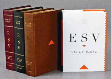 http://www.shellyduffer.com/wp-content/uploads/2011/09/esv-bible.jpg