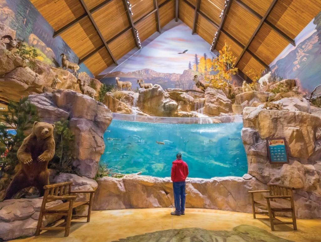 Mha Bass Pro Shops Outdoor World Colorado Springs