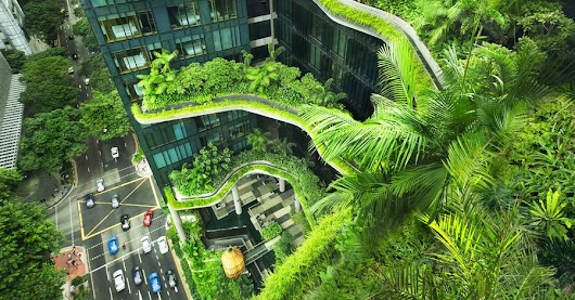 More Buildings Are Going Green. Literally. - WSJ