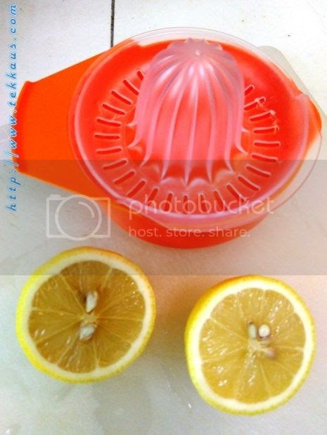 photo 03 Honey Lemon Juice For Cough amp Phelgm_zps0jdrag3f.jpg