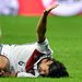 Sami Khedira tore a knee ligament in Friday's match against Italy.