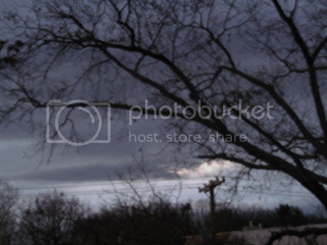 photo 2012-11-26062720_zps0b62528a.jpg