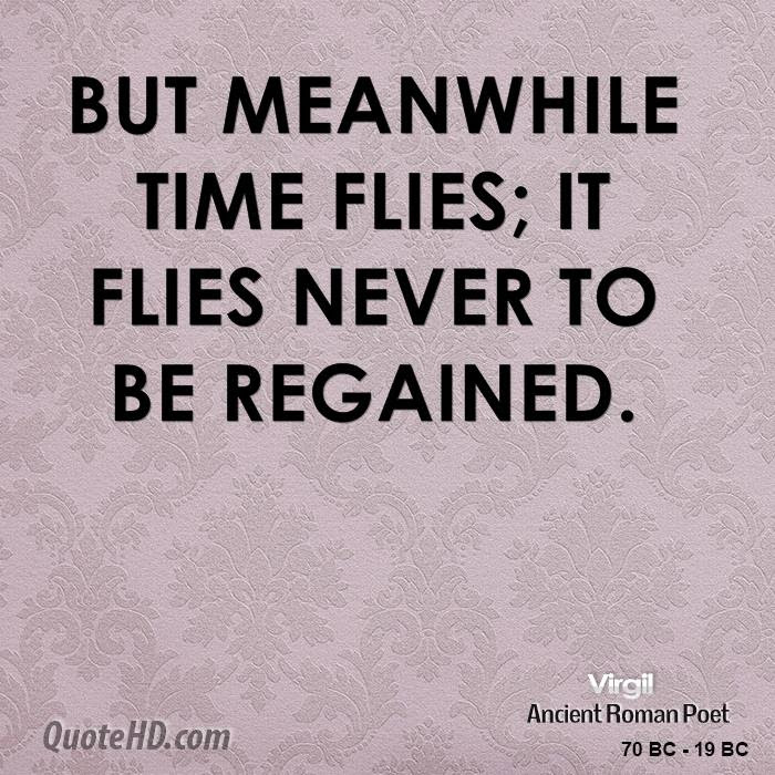 Virgil Quotes Quotehd