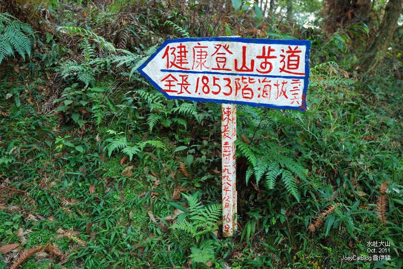 2011_1026水社大山DSC_2912