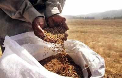 Government launches AgriMarket, Crop Insurance mobile apps for farmers - Times of India