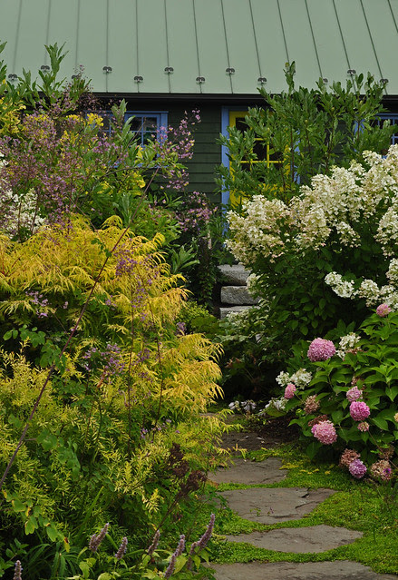 Linden Hill Cottage (3)
