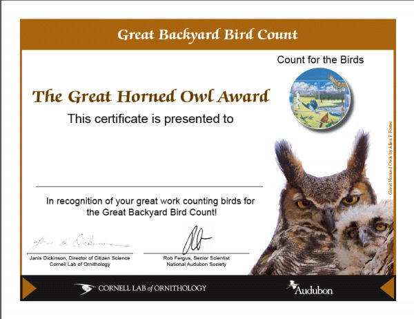 Backyard Bird Count Cert