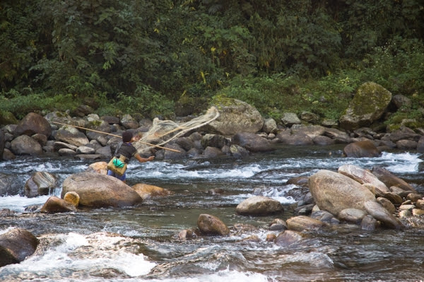 Pescando al rall