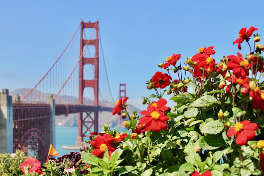 48 Hours In San Francisco, How To Have An Extraordinary Time - Growing Up Bilingual