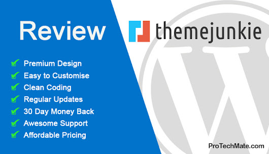 Theme Junkie Review - Affordable Responsive Wordpress Theme