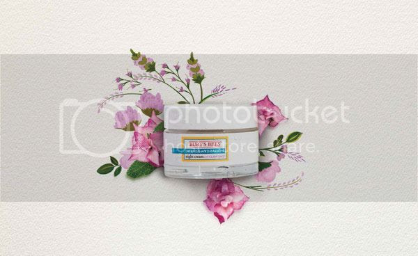 photo burts-bees-intense-hydration-Night-Cream_zpsxm17kyte.jpg
