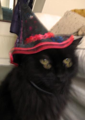 Bolli Halloween Outtake