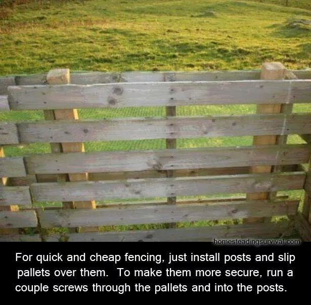 Permaculture Ideas Fantastic Pallet Fencing Idea Reuse
