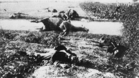 Des cadavres de chevaux et de soldats gisent au sol à Halen (Belgique), le 12 août 1914.