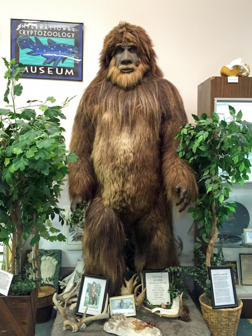 Grab your Bigfoot Research Kit, it's time for... | Archie McPhee's Endless Geyser of AWESOME!