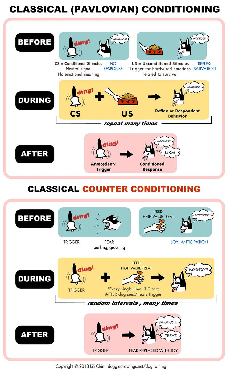 psychology classical conditioning counter conditioning
