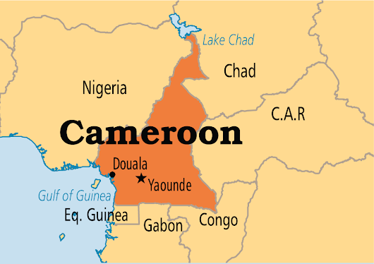 Worry over increased Cameroonian refugees in Taraba - The Nation Nigeria