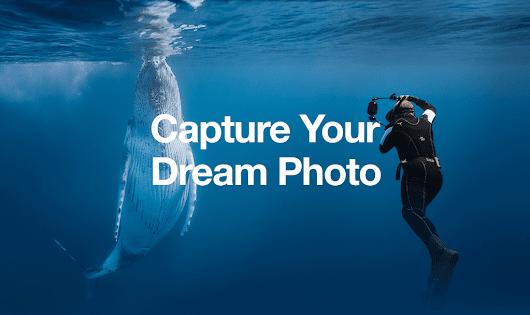 Photographers, Your Dream Shot Is About to Become a Reality