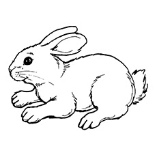 rabbit coloring download rabbit coloring for free 2019