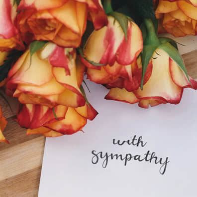 Condolence Messages for your Sympathy Card   Shutterfly