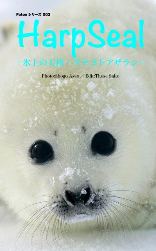 Fotonシリーズ003 Harp Sealー氷上の天使・タテゴトアザラシー