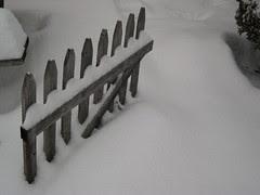 Winter Fence Keeps Silent Vigel