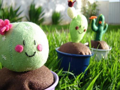 Cactus by Hipopótominha