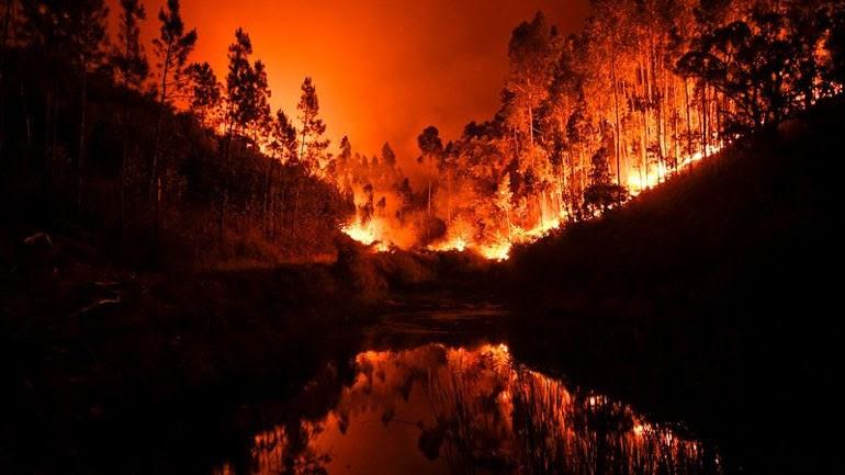 Περίπου 60 δασικές πυρκαγιές ξέσπασαν σε ολόκληρη την Πορτογαλία