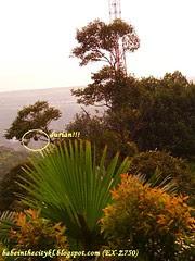 hilltop03 - hutan simpanan kekal bukit relau