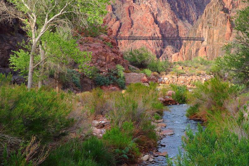 IMG_8399 River Trail Loop