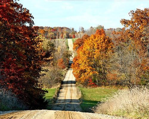 Autumn Color in Missouri.