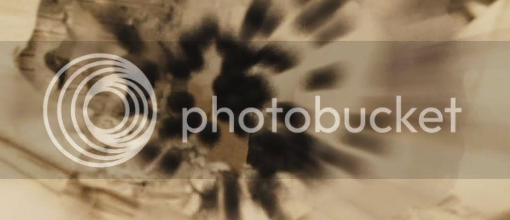 Buckshot #4