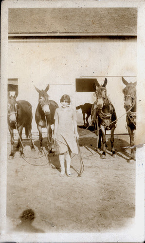 one girl and four mules