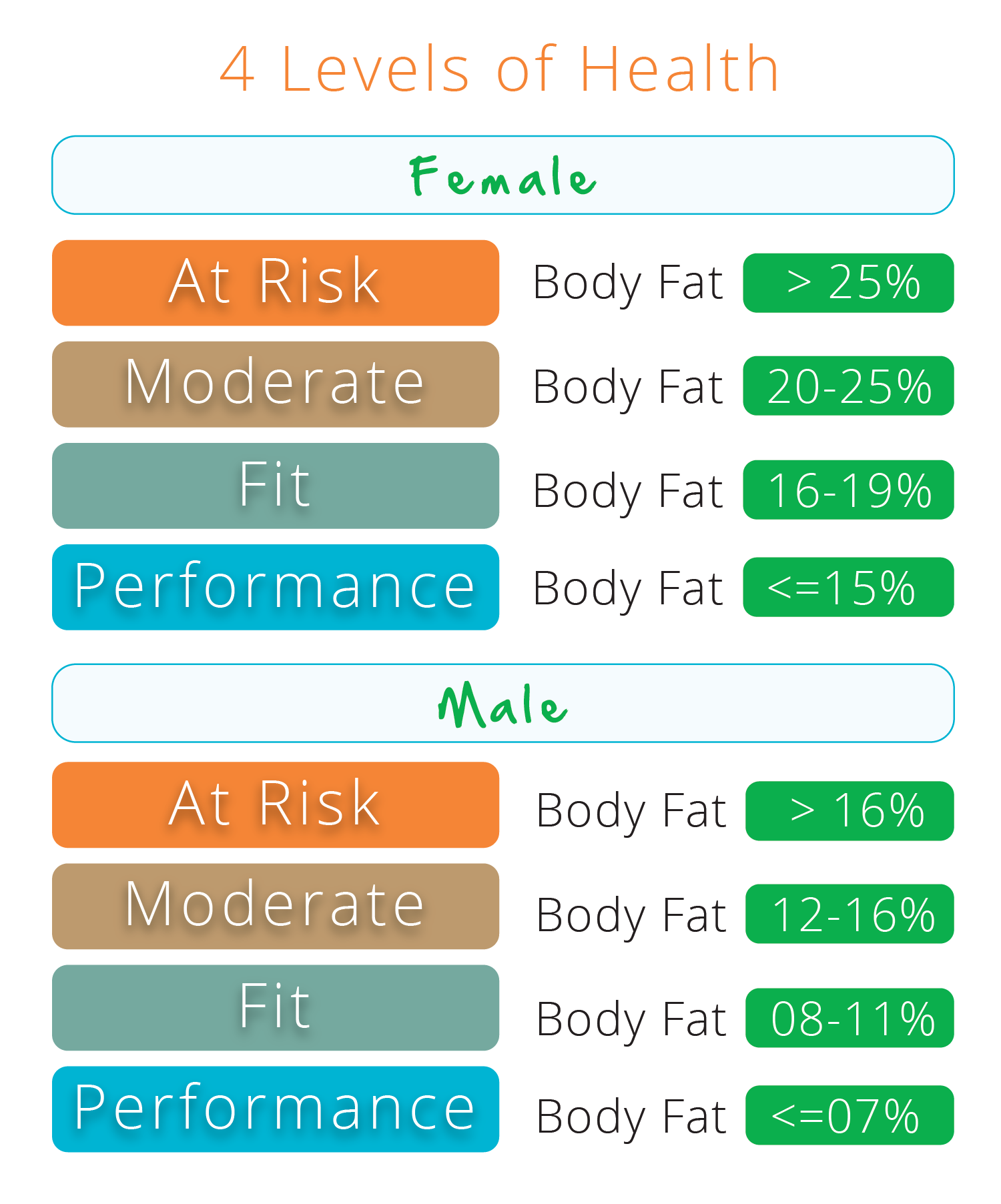 body fat percentage chart navy