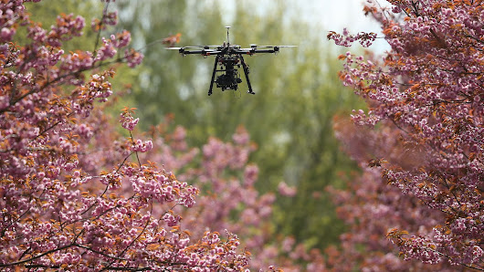 Americans no longer have to register non-commercial drones with the FAA