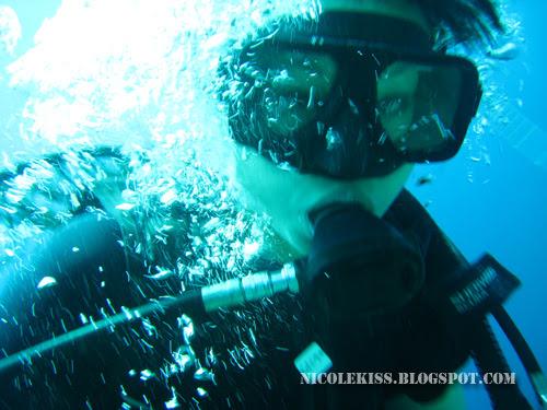 nicolekiss diving