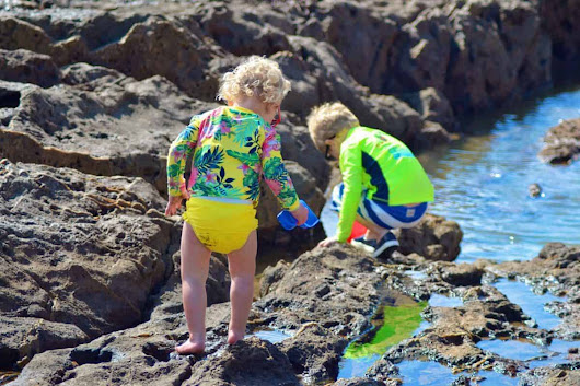 Tips and Advice for Exploring Tide Pools with Kids