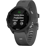 Garmin Forerunner 245 - Smart Watch - Slate Gray