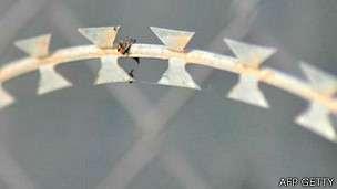 En 2009 una persona murió desangrada por alambres de cuchillas en la valla de Ceuta.