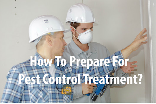 7 Questions You Must Ask Before Hiring a Pest Control Company - Blog