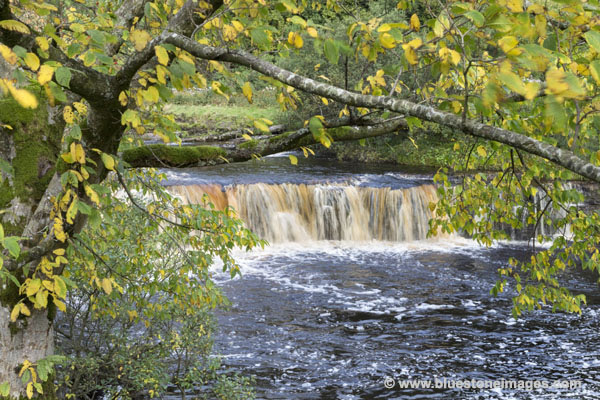 01M-4344 Autumn Colours at Wain Wath Force on the River Swale Swaledale Yorkshire Dales UK