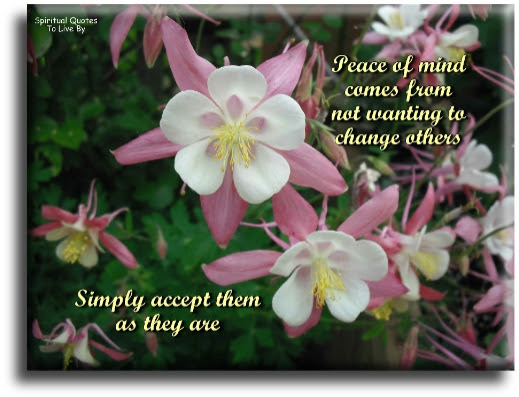 Positive Peace Sayings